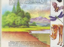 page8636-img015.jpg