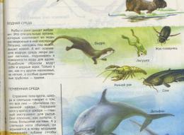 page8636-img018m.jpg